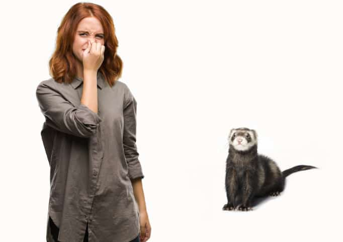 Woman blocking her nose due to ferret odor