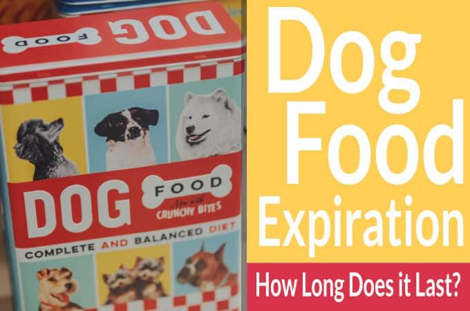 How long does a bag of dog food last?